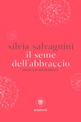 3- Salvagnini